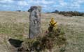 The Blisland Boundary Stone Survey.